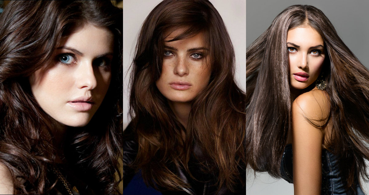 Brunette Hair Colors Fullest Chart Hairstyles Haircuts And Hair