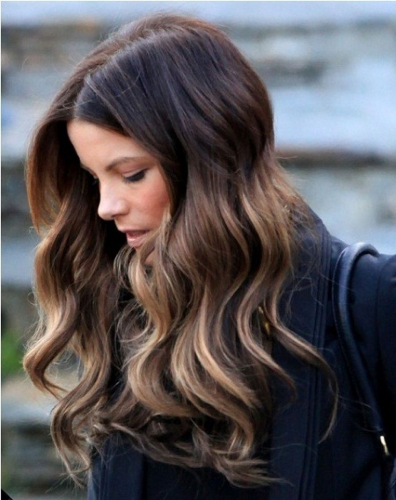 Long Dark Hair With Blonde Highlights