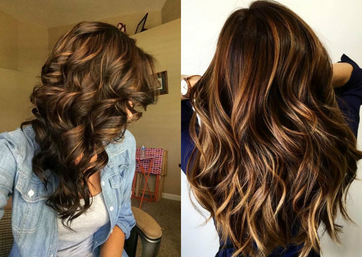 curly brown hair highlights brown hairs