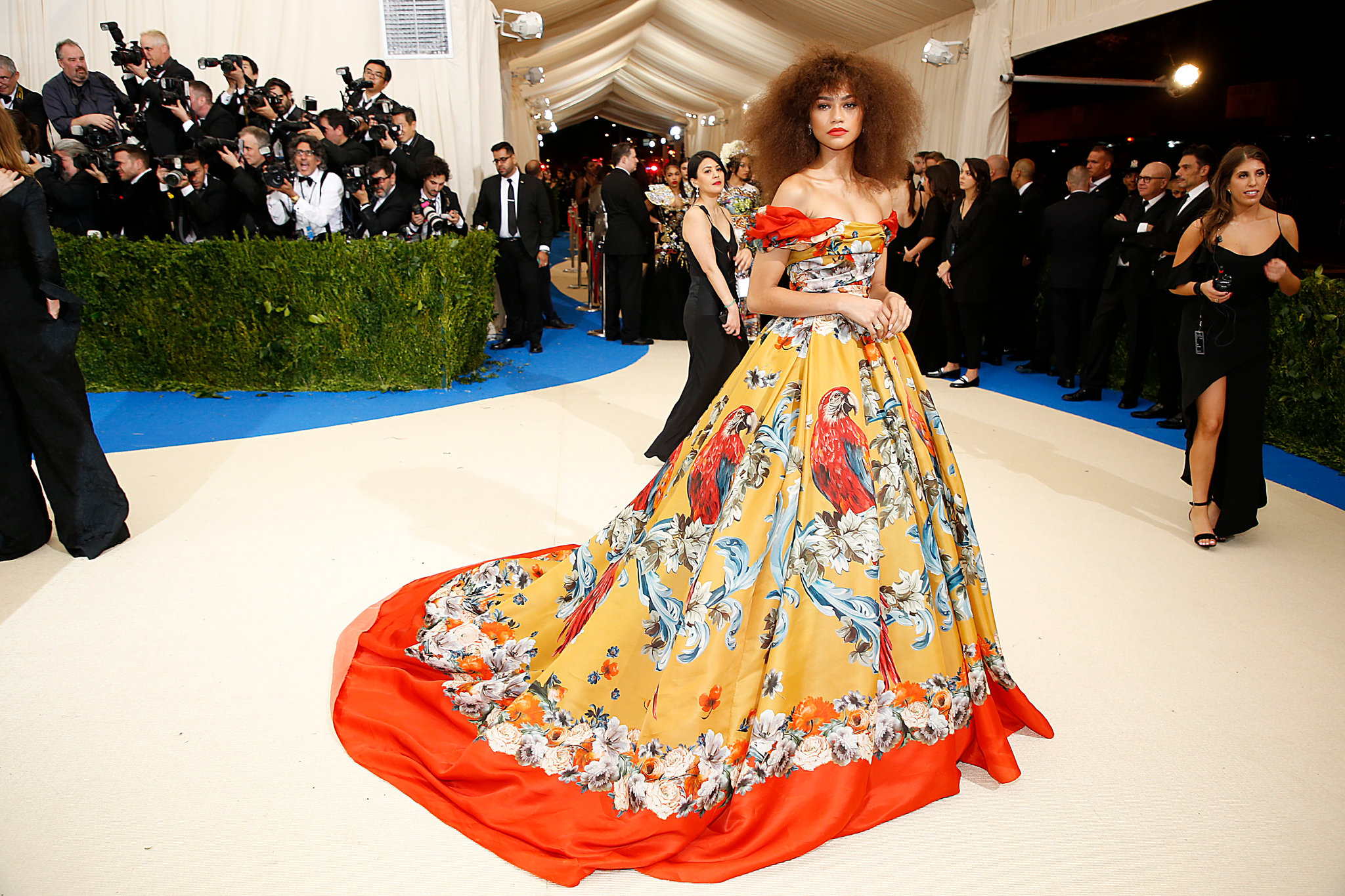 Zendaya natural hairstyles at MET GALA 2017